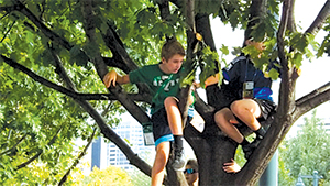 Boys in Tree, Festival of Families